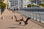 Nagasaki - Three Buzzards Attacking French Fries...