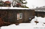 Bunker January 2010
