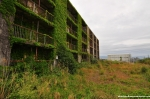 An Overgrown Apartment Building