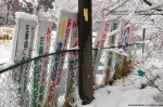 A Bunch Of Signs With The Original Nara DreamlandFont
