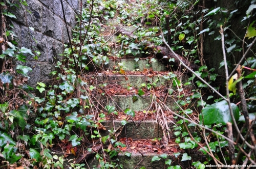 Overgrown Steps