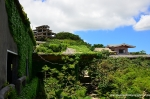 Overgrown Hotel