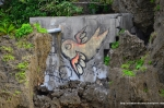 Flying Fish Graffiti