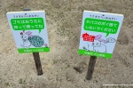 Take Your Garbage With You And Don't Drop Cigarette Butts – Rabbits Might Mistake Them ForFood…