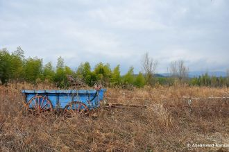 Abandoned Carriage