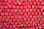 Lots Of Hearts