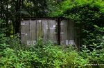 Overgrown Containers