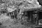 Tokushima Countryside ClinicRevisited