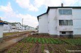 Chongsan-ri Cooperative Farm