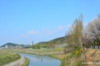 North Korean Theme Park