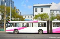 Rather Modern Bus In Pyongyang, North Korea