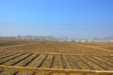 Barren Countryside