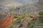 North Korean  Fence At TheDMZ