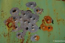 Bullet Holes And Chipping Paint