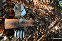 Rusty Remains Covered By Foliage
