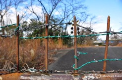 Two New Layers Of Barbed Wire
