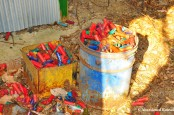 Buckets Of Shotgun Shells
