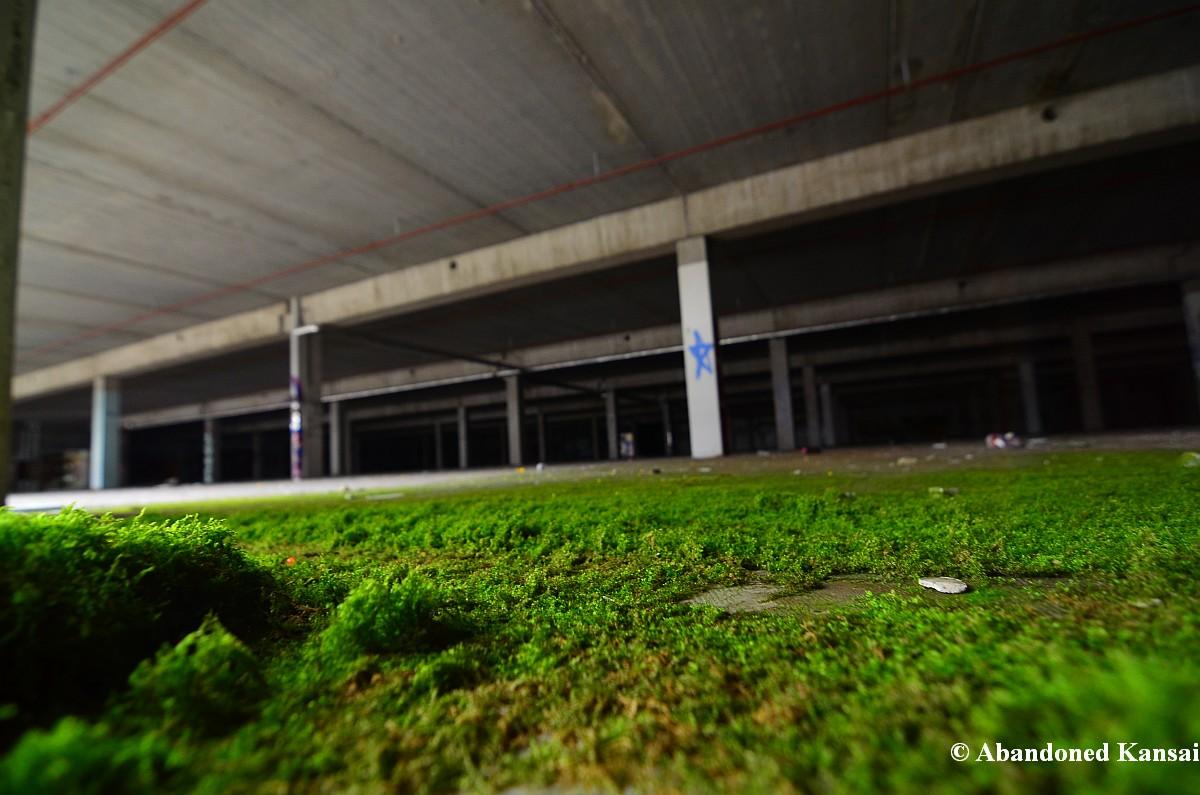 Moss Abandoned Kansai
