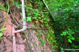 Overgrown Plumbing