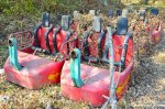 Abandoned Roller CoasterCars