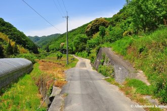 Narrow Countryside Road