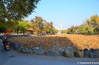 People's Park, Yanji