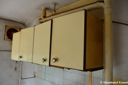 Abandoned Kitchen Cabinet