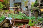Japanese Ghost Town