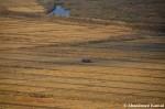 Harvest In North Korea, Rason,DPRK