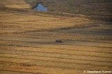 Harvest In North Korea, Rason, DPRK