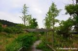 Abandoned Flower Park