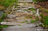Destroyed Wooden Walkway