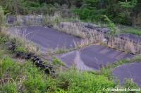 Abandoned Race Track