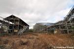 Nara Dreamland Foreclosed
