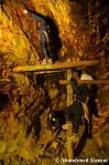 Japanese Tourist Mine