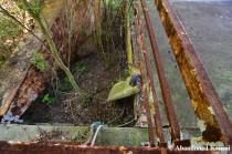 Deathtrap Ropeway
