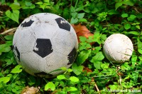 Soccer Ball And Baseball