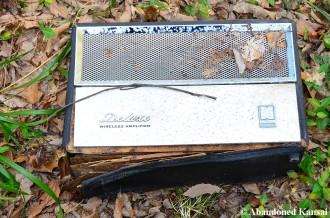 Deluxe Wireless Amplifier