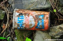 Old Japanese Fanta Orange Can