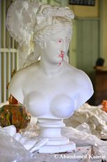Busty Female Bust