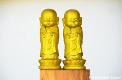 Golden Buddhist Monk Statues