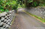 Tamaishigaki – Old HachijojimaWall