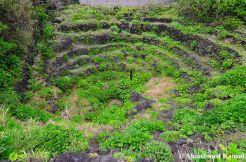 Yaene Spiral Well
