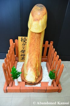 Huge Wooden Phallus