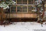 Snowy, Rusty Swing