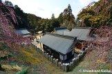 大国恵比須神社