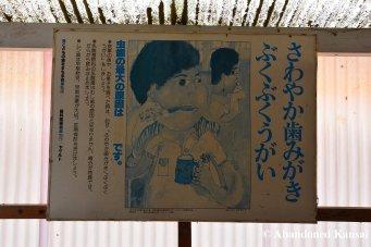 Japanese School Poster - The Importance Of Dental Hygiene
