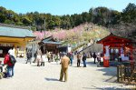Taikokuebisu Shrine
