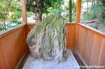 Vulva Shaped Stone