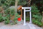 Well Hidden Japanese VulvaStone